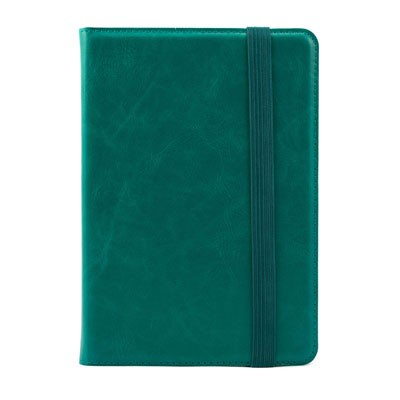 Green Case for Kindle, Kindle Paperwhite and Kindle Touch (General merchandise)
