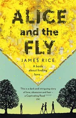 Alice and the Fly (Paperback)