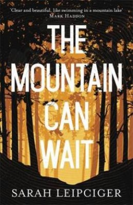 The Mountain Can Wait (Hardback)