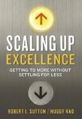 Cover Scaling up Excellence